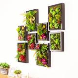 绿洲创意墙上装饰品 仿真多肉植物墙饰壁饰挂饰 客厅墙面壁挂件