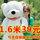 公仔抱抱熊抱枕泰迪熊布娃娃毛绒玩具熊大号生日礼物女生熊猫玩偶