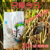东北盘锦大米蟹田农家新米非转基因20斤10GK赛五常稻花香不抛光米