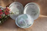美国进口康宁餐具正品套件郁金香/百合/紫莓玻璃碗盘碟20件套组
