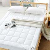 伊牧 床垫棕垫 席梦思酒店宾馆春冬床褥 保护垫单双人薄加厚防滑