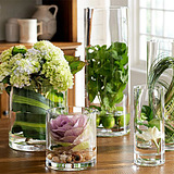 欧式透明玻璃花瓶婚庆酒店路引圆柱直筒水培花艺客厅落地桌面摆件