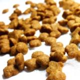 狗粮2.5kg 萨摩耶银狐比熊金毛德牧成犬幼犬美毛补钙专用狗粮