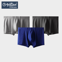 (80S high modal) gold Lee underwear young men's new four-angle shorts comfortable authentic waist