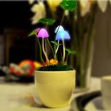 光控阿凡达蘑菇灯陶瓷花盆小夜灯桌面小台灯创意家居灯饰生日礼物
