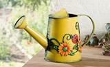 田园清新铁艺花洒 花园花洒喷壶 阳台花洒花瓶 家居装饰 出口原单