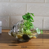New glass hydroponic plant vase simple creative flower pot transparent water cultivation green radish Guanyin bamboo vase container