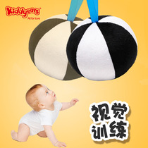 Baby Vision Training ball 0-3 months newborn baby vision tracking black and white card early education educational toys