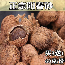 Spring Sand Ren Yangchun specialty Amour Spring Sand Ren stomach warm stomach Guangdong Chinese herbal medicine fresh sand fruit honey