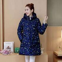 Pregnant womens simple temperament long sleeves long-length fashion printcotton cotton clothing thick winter dress women