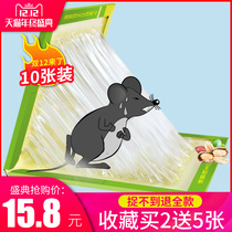 Ultra-strong sticky rat plate catch stick stick stick glue stick catch rat rodent rodent artifact buxing genuine home a nest end