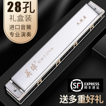 Japan imported gongs 28 hole harmonica adult senior professional playing grade polyphonic C tone accent 24 hole Sirius
