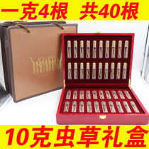 (40 gift box)Yushu cordyceps cordyceps 4 grams of Cordyceps that song gift cordyceps cordyceps