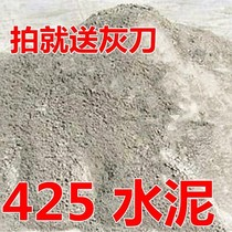 Cement 425 fast dry black cement bulk cement wall tile filling plug leak small package cement 5 catties