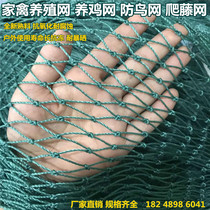 Chicken NET climbing rattan net anti-bird Net poultry Breeding Net chicken Enclosure block Chicken skynet nylon net fishing net