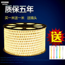 LED lights with 2835 double-row living room ceiling 220v waterproof outdoor Super Bright 3014 double row 240 beads soft light bar