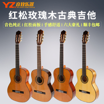 Bullfighter Classical Guitar Student Professional Examination Level Playing Full Single Board Guitar 3639 FlamengoGie It