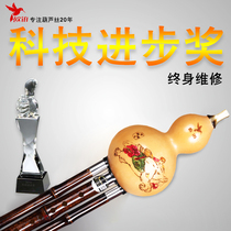 European platinum gourd wire musical instrument beginner primary school students beginners entry children adult C Cut B tune Hu Lu silk