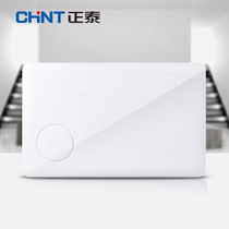 Zhengtai strong electric box home Assembly electric box 16 circuit concealed NEX5-16 circuit simple white