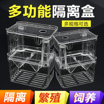 Peacock breeding box aquarium acrylic isolation box extra large spawning hatching delivery room small fry young size fish