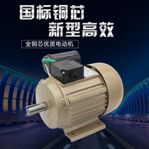 Factory direct Weihai wendeng Lu Star Brand single-phase 220V asynchronous motor copper wire copper induction motor