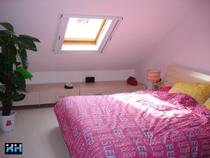 Basement sunroof pitched roof windows attic sunroof pitched roof windows pitched roof windows