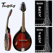 Timothy really cute intermediate M100 tweeter to learn a full set of eight-string mandolin instrument mandolin