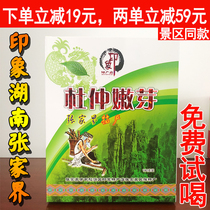 Du Zhongnen bud impression Zhangjiajie Du Zhong tea Hunan native wild Du Zhong tea spring tea free of charge to try.