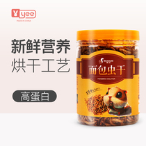 Bread Bug Dry Hamster grain Pet snack crawl favorite staple food Tortoise foods Yellow powder worm feed hedgehog staple Food