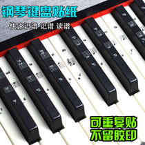 Transparent piano keyboard stickers key paste 88 key 61 key 54 key five music keyboard paste beginner
