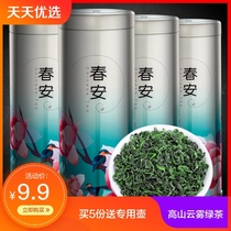 Emperor new tea green tea Sunshine Mountain Green Tea cloud fog tea flavor 2018 New tea canned 100g