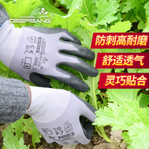 Labor insurance gloves non-slip anti-stab anti-cut gardening gloves wear-resistant anti-tie multi-functional breathable labor protection thick gloves