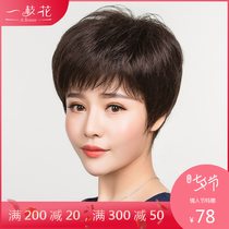 Middle-aged and elderly wig female short send mother real hair lady full-head set fluffy natural real hair wig set