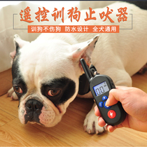 Dog training dog artifact anti-barking neighbors bites people disturbing electric shock collar Remote Training Device good dog electronic circle