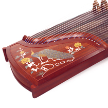 Shanghai DingYun 902-KQ Fin Yuezhibranch Red Flower Pear Test-level playing Guzheng Qin Ding Yun official flagship store