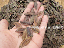 High germination rate of Chinese herbal medicine seeds in the seeds of eucommia ulmoides seed eucommia seed seeds