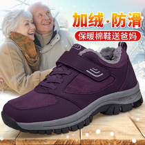 Winter thickening outdoor elderly cotton shoes women non-slip warm grandma shoes plus cashmere middle-aged elderly mother sports walking shoes