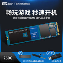 WD Western Digital WDS250G1B0C solid state drive 250G M 2 NVME SN500 computer SSD