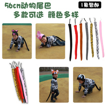 Kindergarten children show props animal tail tiger leopard paw gloves hat accessories masquerade