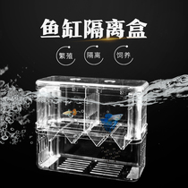 Peacock fish breeding box isolation box fish tank Hatch box spawner acrylic separation box small fish delivery room isolation box