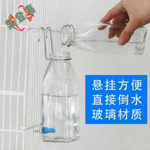 Squirrel big-eyed flying rat parrot hedgehog dragon cat supplies large silent hit needle glass water dispenser water dispenser kettle kettle