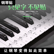 88 key 61 key 54 key transparent piano keyboard stickers electronic piano music notes