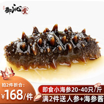 Royal qin tang sea cucumber instant single loaded wild Dalian Liaoning sea cucumber fresh sea infiltration 500 grams gift box fast food sea cucumber