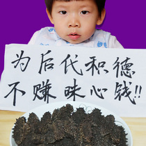 Wang Dalian sea cucumber dry goods 50g deep sea wild sea cucumber thorn Liao ginseng fresh sea pure light dry sea seepage gift box