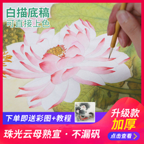 Gongbi white line drawing can be directly colored with color step tutorial beginner hook line Pen Set large figures flowers and birds landscape material childrens entry copy peony Lotus Guanyin