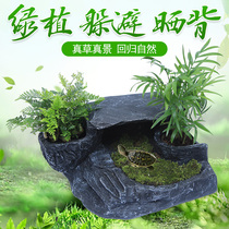 Turtle drying platform climbing Taiwan large turtle cylinder landscaping floating island climbing Brazil turtle drying platform to avoid the cave drying turtle Taiwan