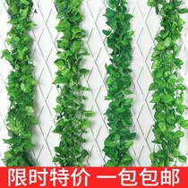 Simulation green leaves flower vine wedding green fake vine flower plastic grape leaf green leaf Creeper air conditioning water pipe decoration