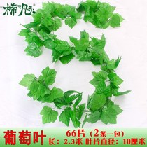 Grape leaves leaves leaves green leaves plastic green plants water pipes winding fake flowers rattan Vine ceiling decoration dazzle