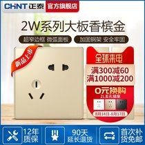 CHiNT switch socket 86 NEW2W Champagne Gold new five-hole two three plug household power USB socket