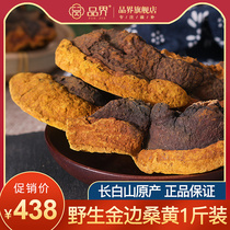 (500g 1 kg loaded)baekseong authentic wild Phnom Penh wild Mulberry yellow tree Ganoderma lucidum 500g